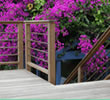 Naturally Durable Tropical Hardwood Decking